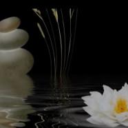 Musica Zen per Meditazione e Rilassamento