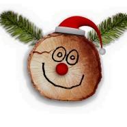 Le feste natalizie…